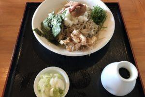 長野市川中島「たなぼた庵」の梅おろしそば